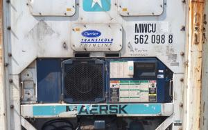 Carrier refrigerated container 20 ft 1999 release MWCU562098-8